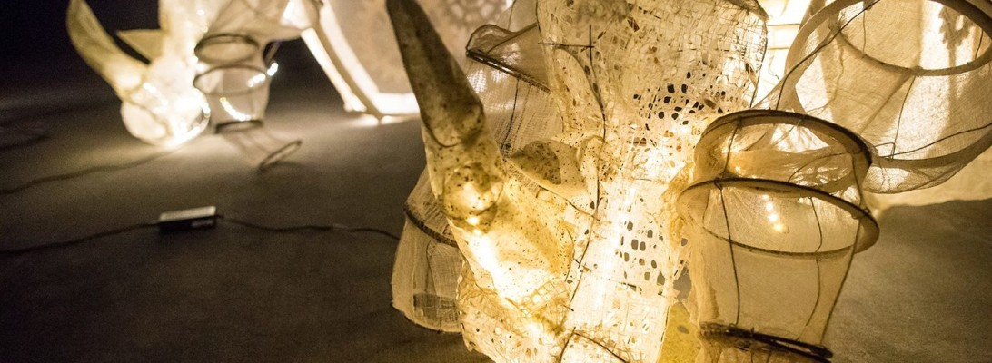 Rhino_CU_AEB_1995